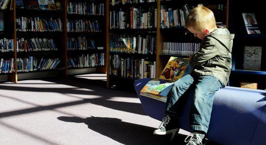 Dreng på bibliotek